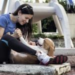 Sport Beagle Dog - Calendario Ascan 2012