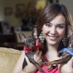 2 Chihuahuas Love